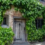 Foliage around door and windows