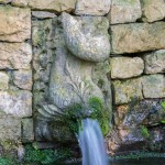 Fish water feature