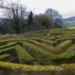The Anniversary Maze