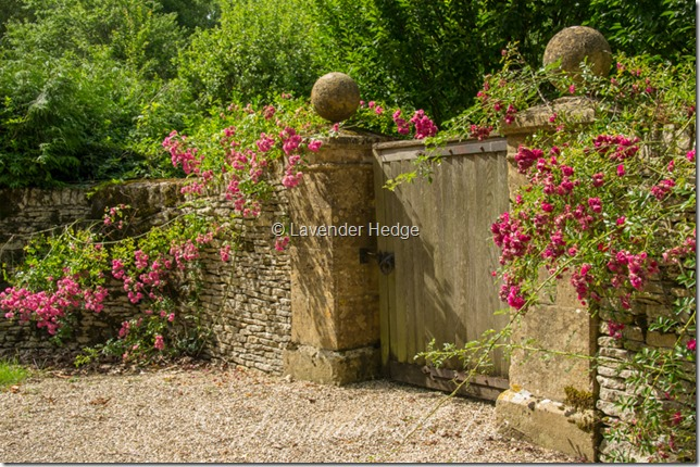 Cotswold stone wall and garden gate