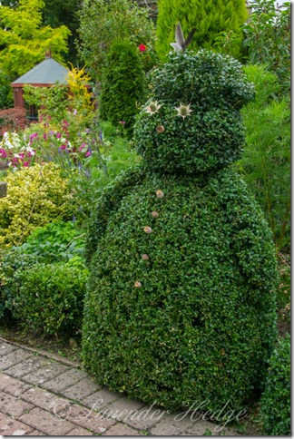 Topiary box man