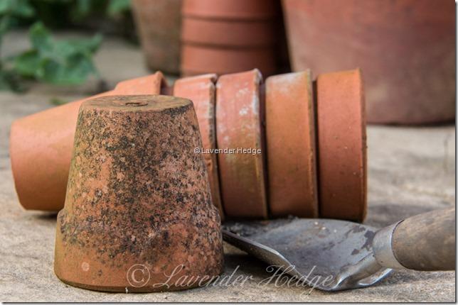 Vintage Flowerpots