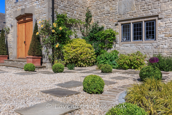 Topiary balls in gravel garden
