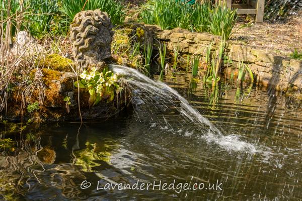 water fountain in garden pond